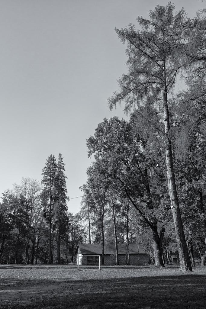 5. Boisko sportowe w parku w Falejówce