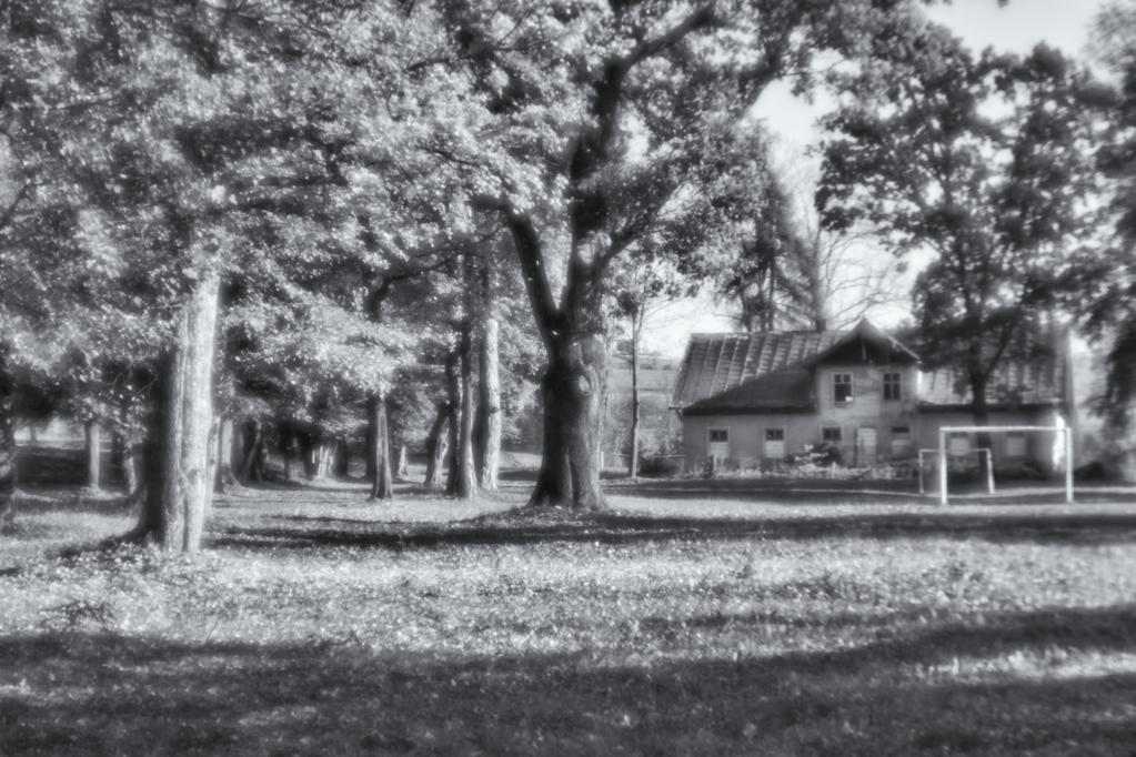 9. Park w Falejówce